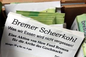 arche-samentuete_scheerkohl_288.jpg