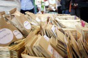 aktuelles-aktuelles_2013-markt_saatgut_2_heu_288.jpg