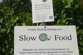 aktuelles-aktuelles_2013-slowfood_wegweiser_288.jpg
