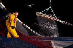 aktuelles-aktuelles_2014-fisherman-fishing-at-night-france-ocean2012-corey-arnold-288.jpg