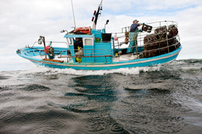 aktuelles-aktuelles_2014-artisanal-fisherman_1_288.jpg