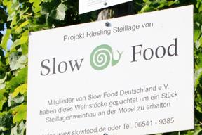 rebstockpatenschaften-rebstockpatenfest_2014_5.jpg