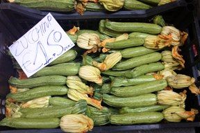 aktuelles-aktuelles_2015-bitter_zucchini_288.jpg