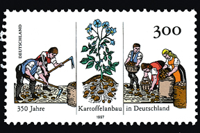 aktuelles-aktuelles_2015-kartoffelanbau-briefmarke_288.jpg