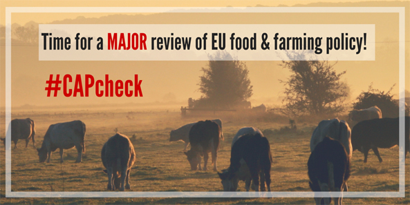aktuelles-aktuelles_2016-time-for-a-major-review-of-eu-food-and-farming-policy_593.jpg
