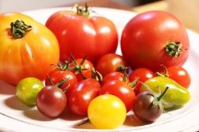 aktuelles-aktuelles_2016-bio_tomaten_vielfalt_288.jpg