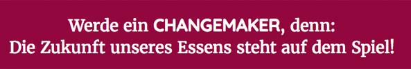 bildung-syf_akademie_changemaker_593.jpg
