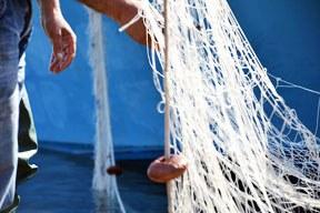 EU-Fischereipolitik: Beschluss der Minister zu Gesamtfangmengen zu zögerlich