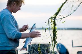 aktuelles-aktuelles_2017-nordseefischer_288.jpg