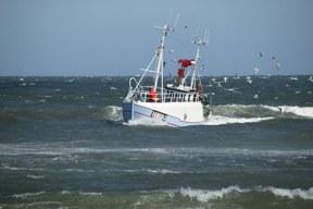 Meeresschutz: Handwerkliche Fischerei und nachhaltiger Fischkonsum