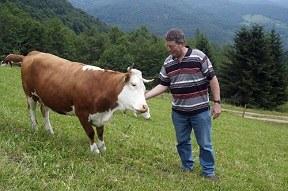 """Streitschrift: """"Landwirtschaft am Scheideweg"""""""
