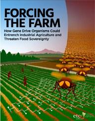 """Welternährungstag: Bundesregierung muss sich für ein Moratorium gegen """"Gene Drives"""" in der Landwirtschaft aussprechen"""