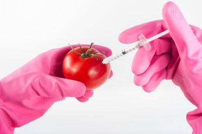 Neue Gentechnik: Droht das Ende der Freiheit auf eine gentechnikfreie Ernährung?
