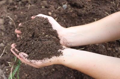 Gesunder Boden, gesunde Lebensmittel: Einladung zum Bodentag 2019