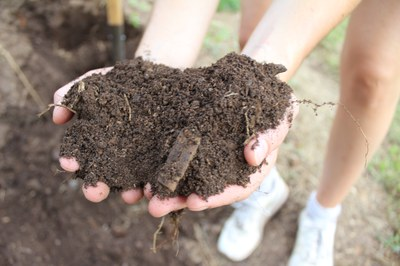 Weltbodentag: Durch Bodengesundheit Zukunft unserer Ernährung sichern