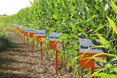 Weltklimarat-Bericht bestätigt: Abkehr von industriellem Lebensmittelsystem unabdingbar