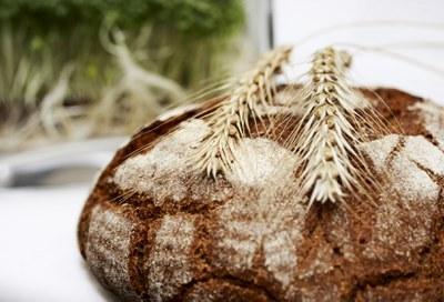 Weltverbrauchertag 2019: Was Slow Food Deutschland fordert