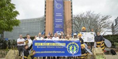 Bienen und Bauern retten: Warum deine Unterstützung der europäischen Bürgerinitiative so wichtig ist!