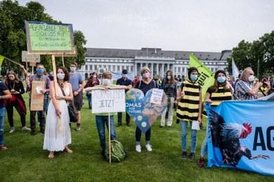 Demonstration zum EU-Agrargipfel: Höfe erhalten, Insekten retten & Klima schützen