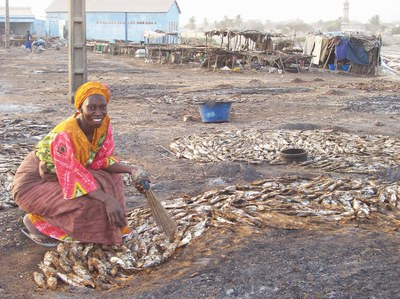 Fischerei: Senegals Fischer rufen um Hilfe gegen Plünderung durch fremde Trawler