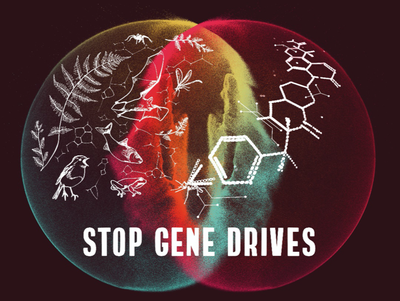 Gene Drive: Artensterben dank Gentechnik?