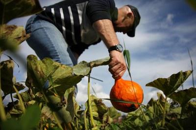 Kritischer Agrarbericht: Veränderungen in der Landwirtschaft gemeinsam anpacken!