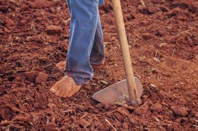 Landarbeiter*innen ohne Rechte: Die Europäische Lebensmittelversorgung steht auf wackligen Füßen