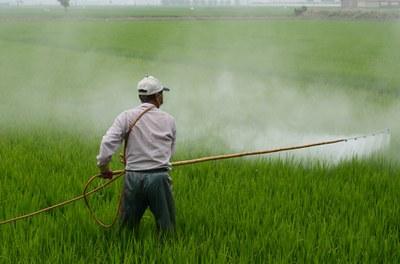 Landwirtschaft mit Zukunft: Themenwoche gegen Pestizide