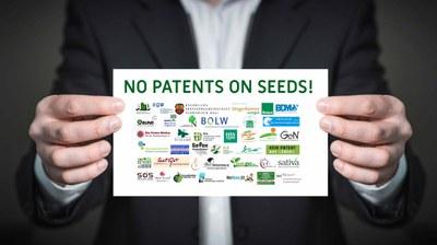Patente auf Saatgut: Appell an Bundesjustizministerin Christine Lambrecht