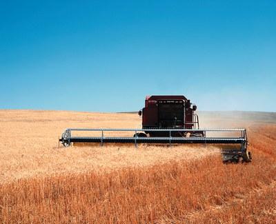 Positionspapier: Bundesregierung muss für eine nachhaltige und sozial gerechte Digitalisierung in der globalen Landwirtschaft eintreten