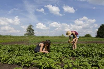 Sorge um krisensichere Ernährung: Höchste Zeit für eine Regionalisierung in der Ernährungswirtschaft