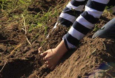 Zum diesjährigen Welt-Bodentag: Erinnerung an Boden-Botschafterin Ursula Hudson und Boden-Tipps für Verbraucher*innen