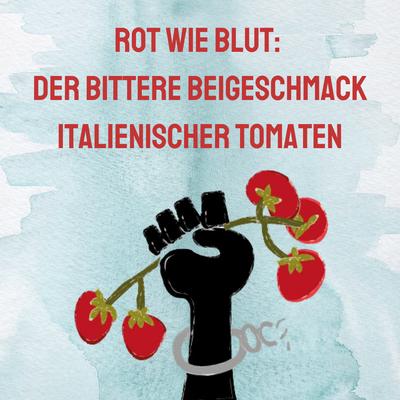 Audio-Feature der Slow Food Youth: Rot wie Blut: Der bittere Beigeschmack italienischer Tomaten