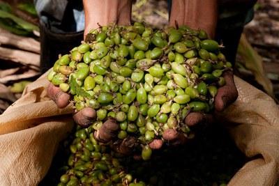 Slow Food Jahresthemen: Fairness und Getränke