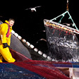 aktuelles-aktuelles_2014-fisherman-fishing-at-night-france-ocean2012-corey-arnold-112.jpg