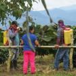 aktuelles-aktuelles_2014-glyphosat_kolumbien_112.jpg