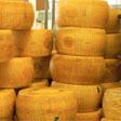 aktuelles-aktuelles_2017-cheese_stand_2015_112.jpg