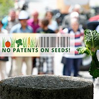 Aufruf Demo Keine Patente auf Saatgut