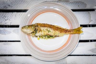2019_Fisch_(c)Slow Food_33.jpg