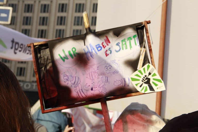 (c) Lotte Heerschop_WHES_2015_Auswahl (3).JPG