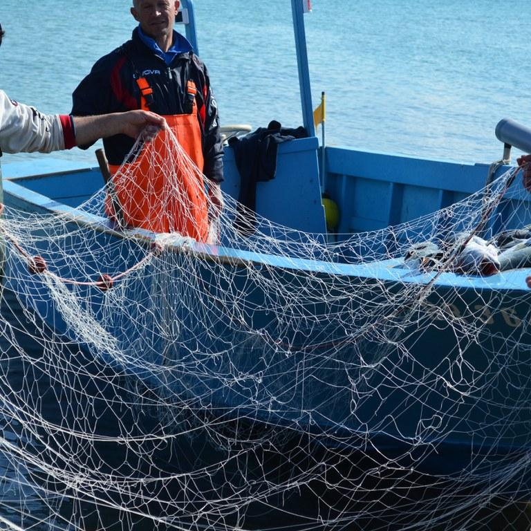 Netze © Slow Food_1_1.jpg