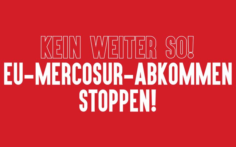 Mercosur Banner.png