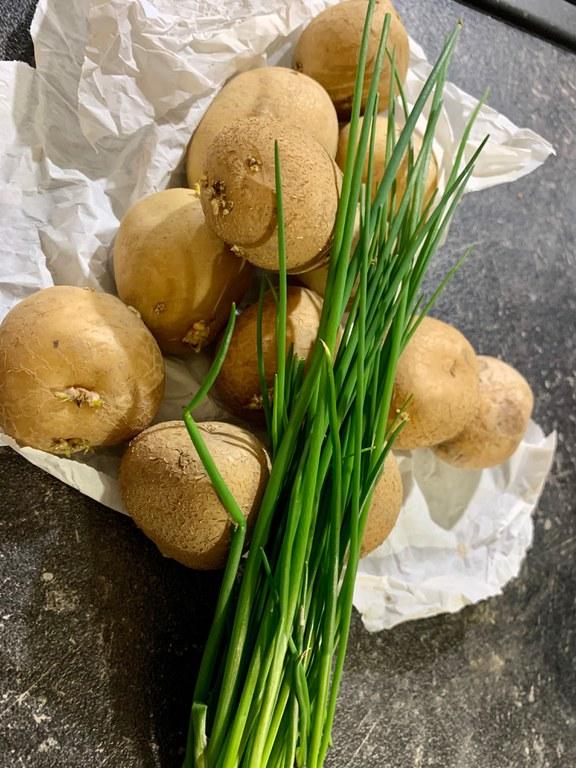 Kartoffeln (c) Michaela Wendel.jpeg
