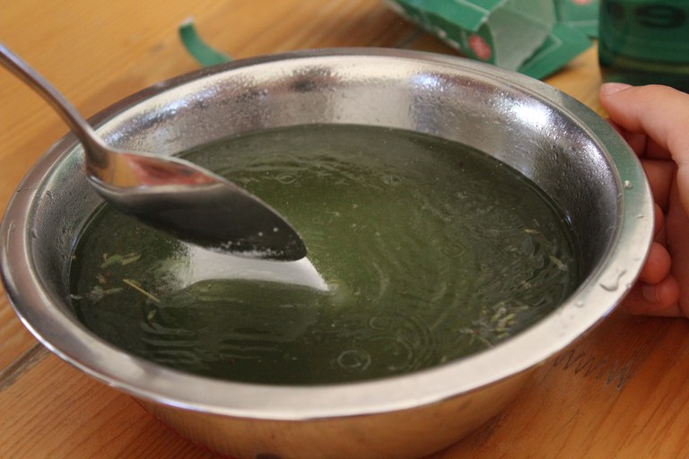 Pflegeprodukte - Shampoo 2.JPG