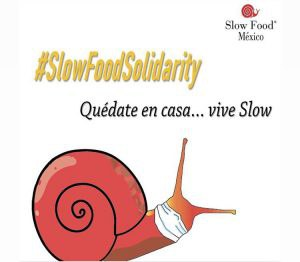 slowfoodsolidarity (c) Slow Food Mexico.jpg