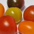 kinder-_und_jugendliche-tomaten_112.jpg